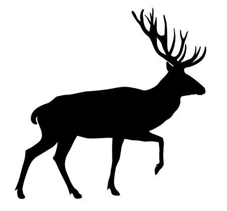 Vector illustratie van herten silhouet