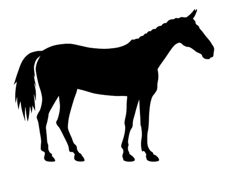 horse vector: vector illustration of standing horse silhouette