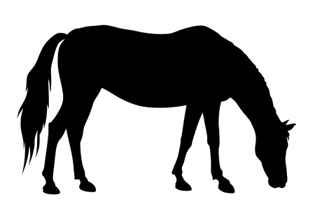 vector illustration of feeding horse silhouette Çizim