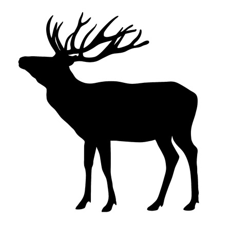 herbivorous animals: Vector illustration of deer silhouette Illustration
