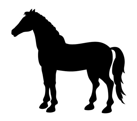 steed: vector illustration of standing horse silhouette