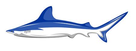 predatory: Abstract vector illustration of shark