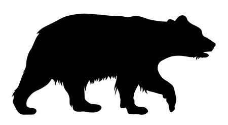 grizzly: Vector illustration of brown bear silhouette