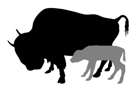 herbivorous animals: Vector illustration of buffalo and calf silhouettes Illustration