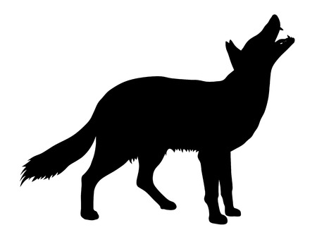 Vector illustration of coyote silhouette