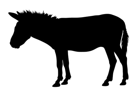 hoofed: Vector illustration of donkey silhouette