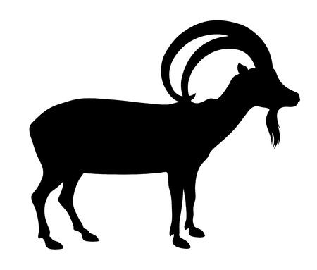 herbivorous animals: Vector illustration of wild goat silhouette