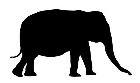 Vector illustration of elephant silhouette Иллюстрация