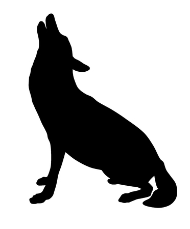 predators: Vector illustration of wolf silhouette Illustration