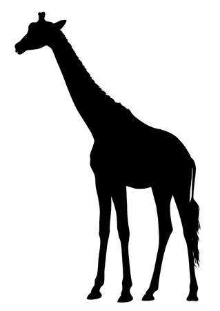 moved: Abstract illustration of an girafe silhouette. The tail of the giraffe is a separate element and can be moved to different locations