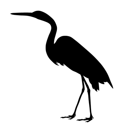 Vector illustration of great egret silhouette