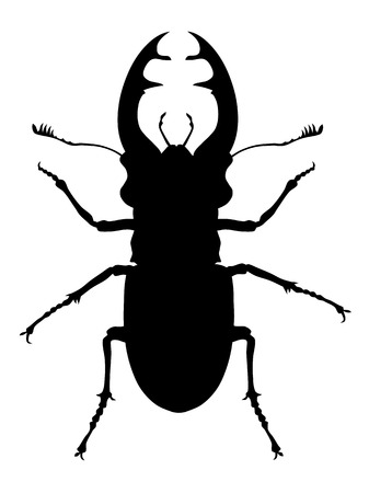 Vector illustration of stag beetle silhouette