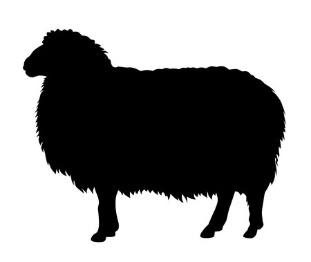 Vector illustration of sheep silhouette Vectores