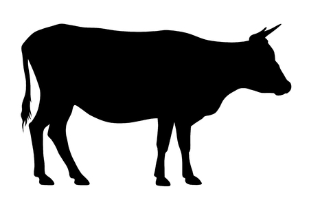 Vector illustration of cow silhouette