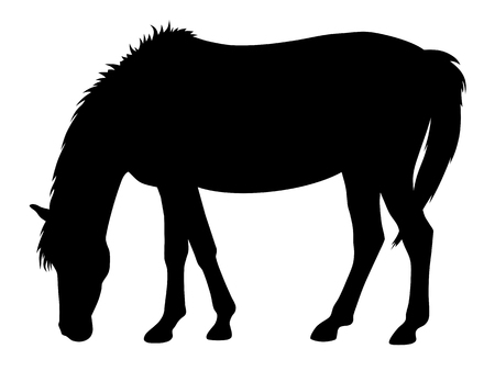 Vector illustration of horse silhouette 免版税图像 - 102251292