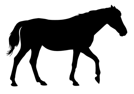 Vector illustration of horse silhouette 写真素材 - 102255436