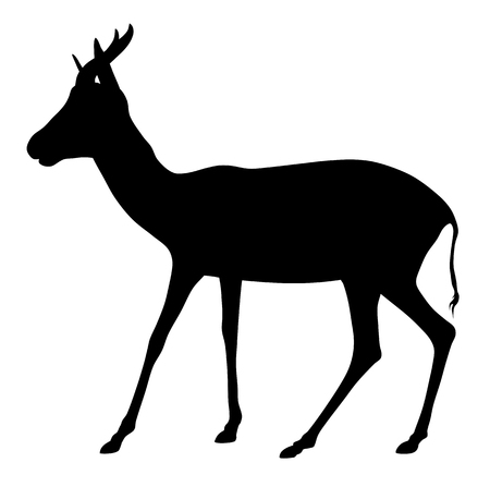 Abstract vector illustration of antelope on white bacground
