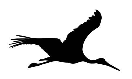 Vector illustration of flying stork silhouette