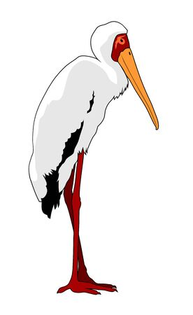Vector illustration of standing Yellow billed stork silhouette Ilustración de vector