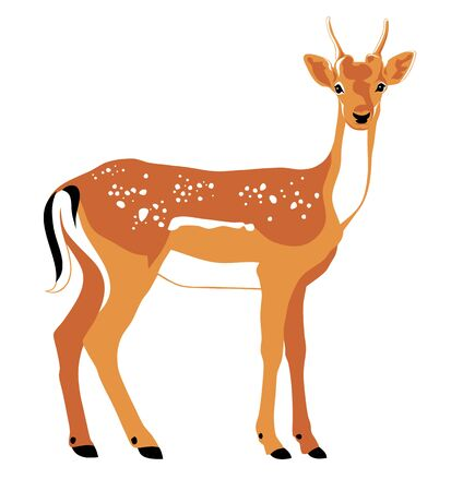 Vector color illustration of Deer side Stock Illustratie