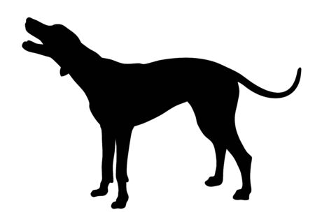 Vector illustration of hunting dog silhouette