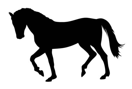 Illustrazione vettoriale di sagoma di cavallo in corsa