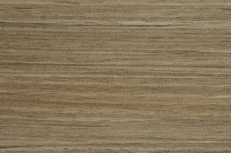 veneer: special wood veneer texture