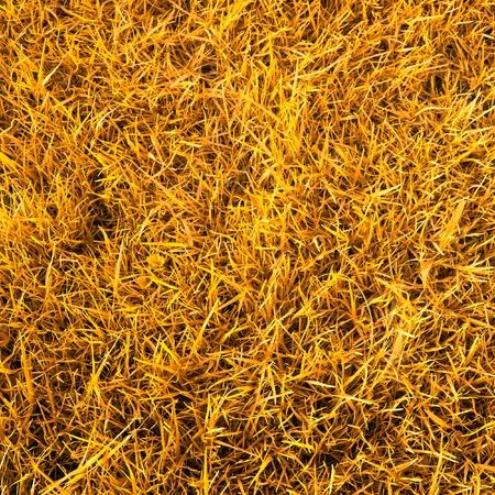 feedstock: Dry straw background