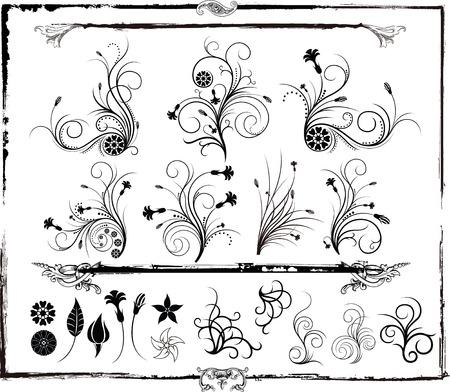 floral design elements and border frame
