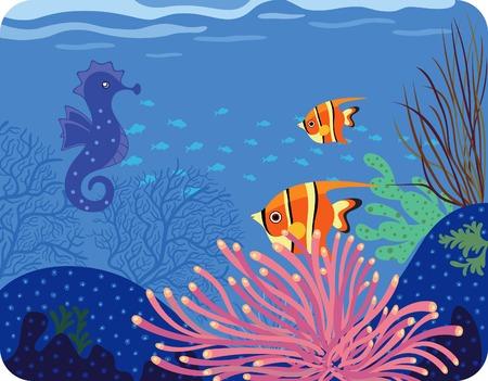 fond marin: Sea Horse et poissons tropicaux