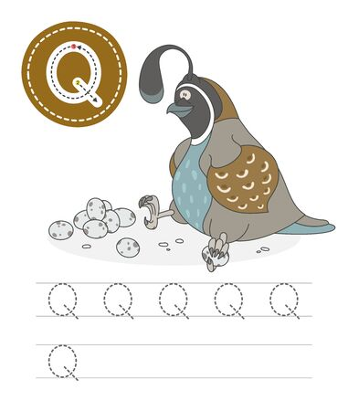 Learning to write a letter - Q. A practical sheet from a set of exercises game for kids. Cartoon funny reptile with letter. Spelling the alphabet. Child development and education. Quail - Vector. Çizim