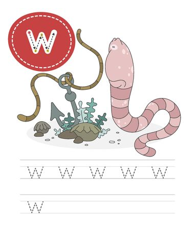 Learning to write a letter - w. A practical sheet from a set of exercises game for kids. Cartoon funny invertebrate creature with letter. Spelling the alphabet. Child development and education. Worm - Vector