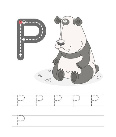 Learning to write a letter - P. A practical sheet from a set of exercises game for kids. Cartoon funny animal with letter. Spelling the alphabet. Child development and education. Panda - Vector. Illusztráció