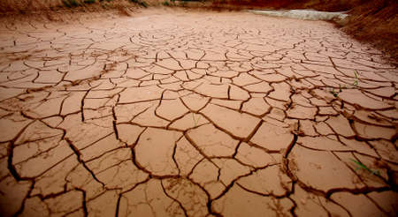 cracked earth is seen in place of a dry lake in the city of Salvador.