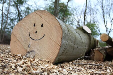 Smiley face on the log