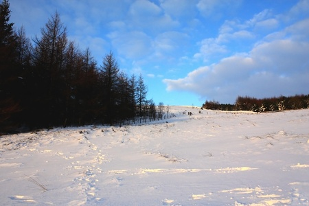Snow covered hill, wood and blue sky
