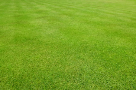 outfield: Diagonally striped green grass sports field Stock Photo