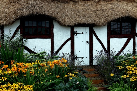 Old white traditional english thatched cottage with lovely garden