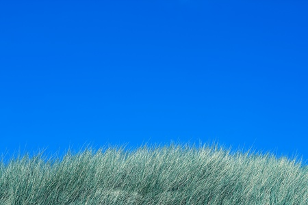 Seaside, tops of dunes and blue sky