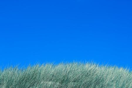 dune: Seaside, tops of dunes and blue sky