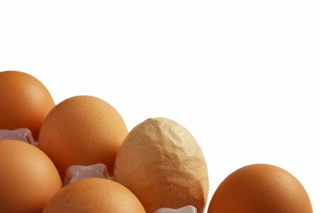 deviant: Group of brown eggs put in two lines in a frame corner with one egg of different color and rough wrinkled shell