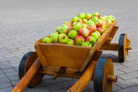 Wooden vintage style horse carriage with wheels full of freshly gathered apples isolated on gray grey paving