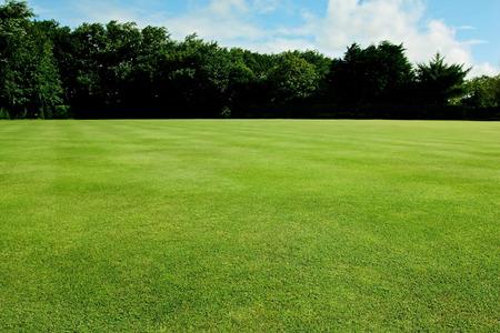 Green short cut grass sport field