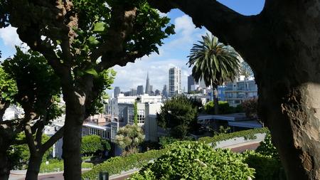 Framed San Fransisco  Skyline Stockfoto