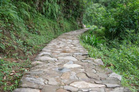cobblestone: Cobblestone walkway