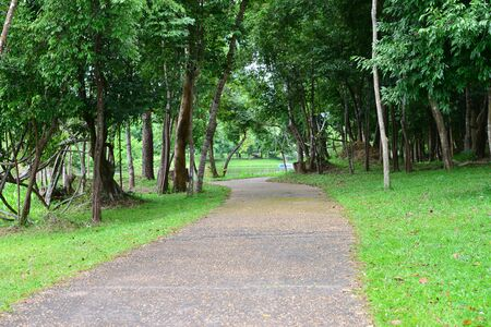 contryside: walk way in the park Stock Photo