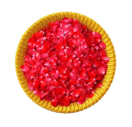 Red rose petals in Golden Bowl on white background Stock Photo - 12918309