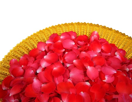 Red rose petals in Golden Bowl on white background Stock Photo