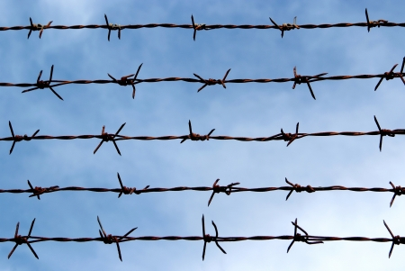 Barb wire fence and blue sky blackground Stock Photo - 15469115