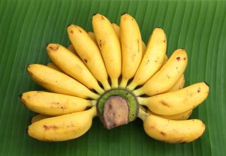 Bunch of bananas on a banana leaf  photo